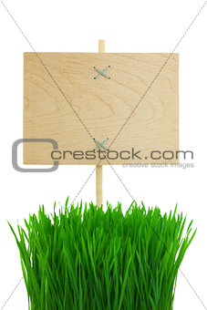 Blank wooden Sign with green Grass / isolated