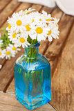 daisy flowers posy