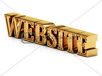 3d inscription WEBSITE golden bright letter