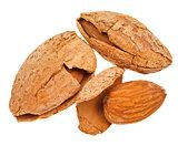 three fried almond nuts