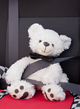 Teddy bear teaching road safety