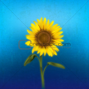 grunge floral illustration with sunflower
