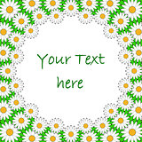 Design colorful chamomile background for text. Floral decorative