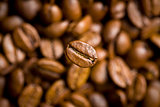 coffee bean on coffee beans background