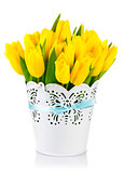 Yellow tulips in bucket