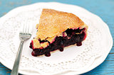 A piece of juicy black currant pie