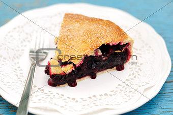 A piece of juicy black currant pie