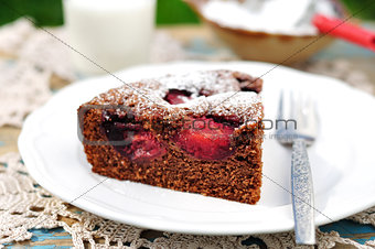 A Piece of Chocolate Plum Cake