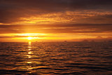 Golden sea sunset idill