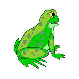 A funny cartoon green frog