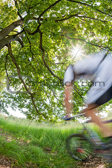 Cyclist in blurred motion riding a bike in a forest