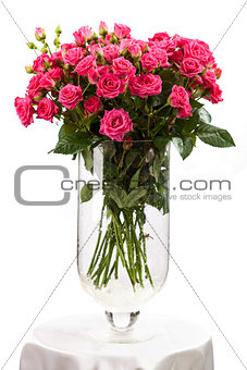 Bouquet of pink roses over white