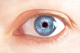 Beutiful female blue eye