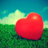 heart on the grass
