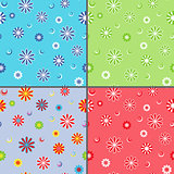 Four seamless vector patterns with chamomile flowers