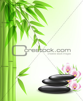 Green bamboo and spa stones