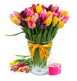 fresh multicolored  tulips in vase