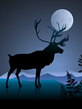 Deer on night background with mmon