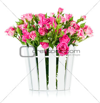 Bouquet pink roses in pot