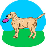 A dog with frisbee