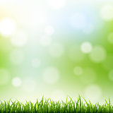 Grass Border With Bokeh Background