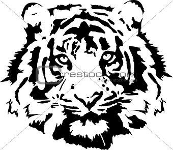 black tiger head