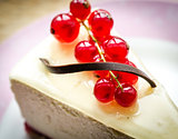 Cheesecake with redcurrant closeup