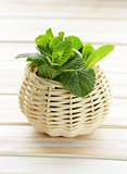bunch of fresh green mint on white wooden table