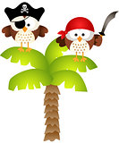 Pirates owls on palm