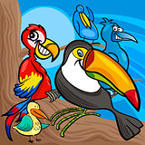 cute birds group cartoon illustration