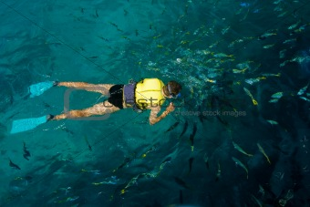 Male snorkeler surrounded by the fish