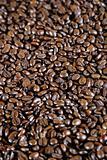 Espresso Coffee Beans