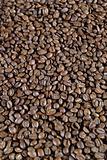 Light Roast Beans