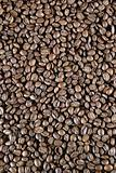 Light Roast Beans