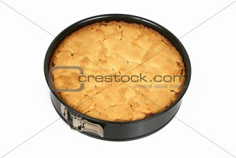 apple cake in tin