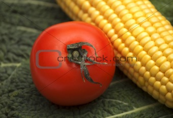 tomato on corn and greens background