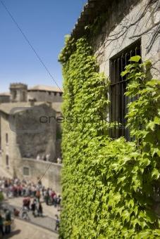 Old jail window