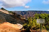 Danger at Waimea Canyon