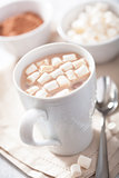 hot chocolate with mini marshmallows