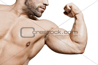 bodybuilding man biceps
