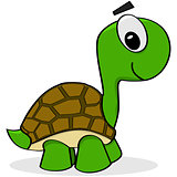 Cartoon turtle