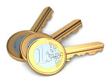 Three euro coin keys.