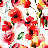 Seamless pattern with Poppy and Tulips flowers