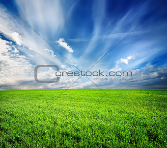 Green field abstract