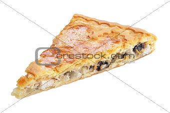 Slice of pie with mushrooms and chicken