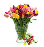bunch of fresh tulips in vase