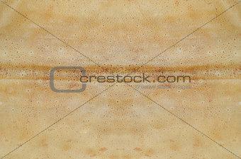 Cuttlefish skin texture