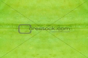 green  skin texture