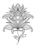 Intricate dainty floral motif design element