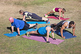 Diverse Group Doing Push-Ups